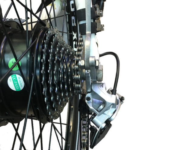Voracity motor